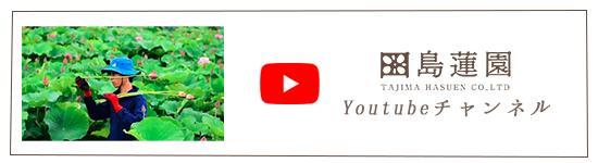 田島蓮園Youtubeチャンネル